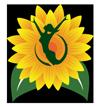 Sunflower Oracle